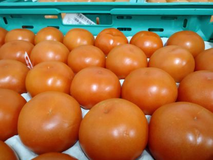 Picture of TOMATE REDONDO ORIG PT